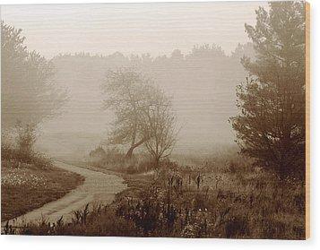 Desolation  Wood Print by Bruce Patrick Smith
