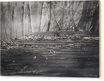 Destiny  Wood Print by Debra Forand