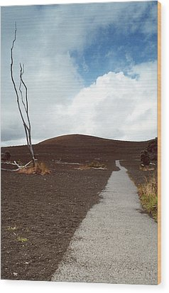 Wood Print featuring the photograph Devastation Trail by Mary Bedy