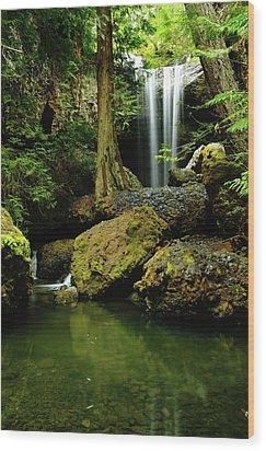 Devil Creek Falls  Wood Print by Jeff Swan