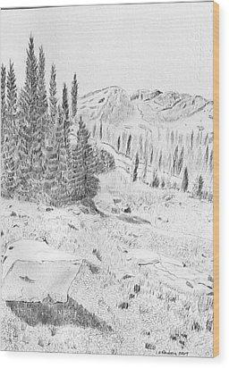 Devil's Castle Wood Print