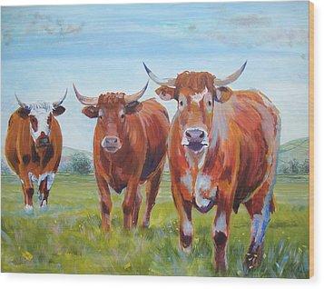 Devon Cattle Wood Print