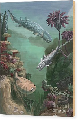 Devonian Period Wood Print by Spencer Sutton