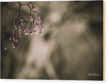 Dew Berries Wood Print