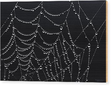 Dew Drops On Web 2 Wood Print by Marty Saccone
