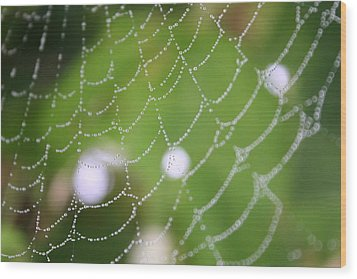 Dew On A Web  Wood Print