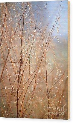 Dewdrop Morning Wood Print by Carol Groenen