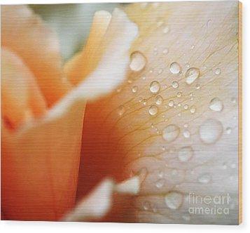 Dewy Rose Wood Print