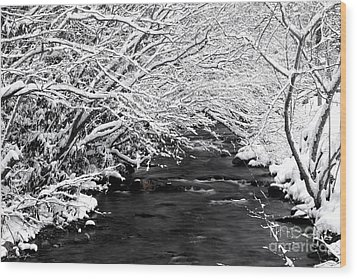 Dick's Creek Snow 2014 Wood Print