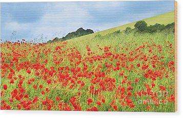 Digital Art Field Of Poppies Wood Print by Natalie Kinnear