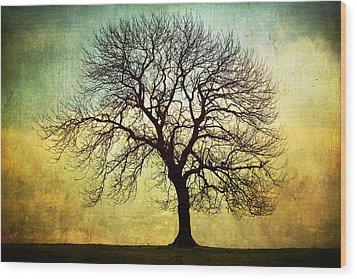 Digital Art Tree Silhouette Wood Print by Natalie Kinnear