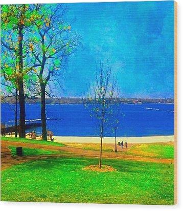 #digitalart #landscape #beach #park Wood Print