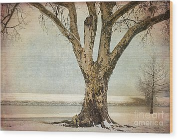 Dignity Wood Print by Betty LaRue