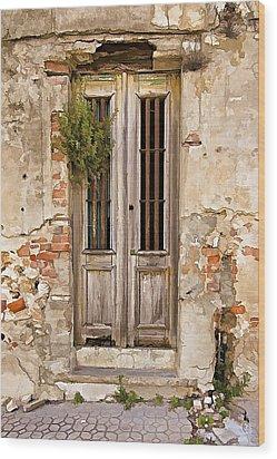 Dilapidated Brown Wood Door Of Portugal Wood Print by David Letts