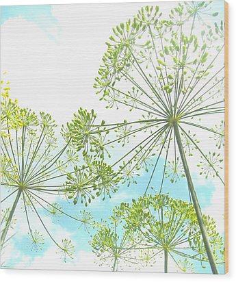 Dill Garden Wood Print