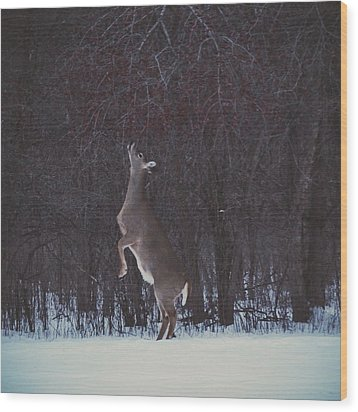Dinner Hunt Wood Print by Nikki McInnes