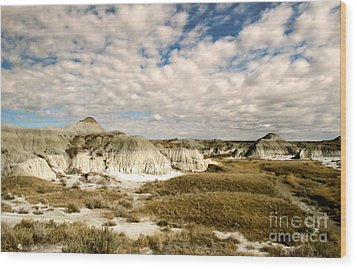 Dinosaur Badlands Wood Print