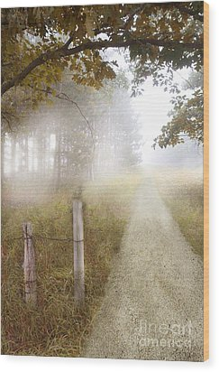 Dirt Road In Fog Wood Print