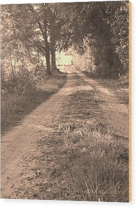 Dirt Road In Moultrie Georgia Wood Print by Cleaster Cotton