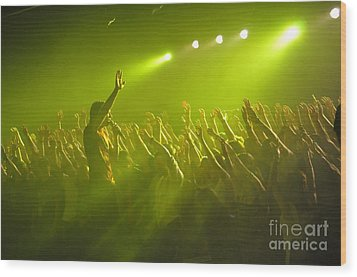 Disciple-kevin-9547 Wood Print by Gary Gingrich Galleries