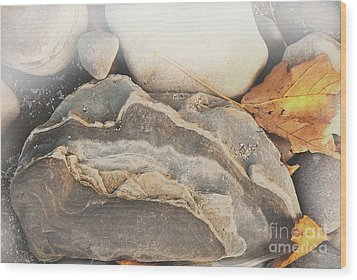 Wood Print featuring the photograph Discovered Beauty by Lena Wilhite