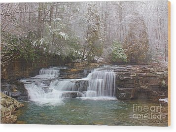 Dismal Falls In Winter Wood Print by Laurinda Bowling