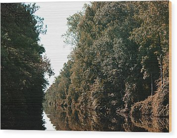 Dismal Swamp Canal Wood Print by Rebecca Davis