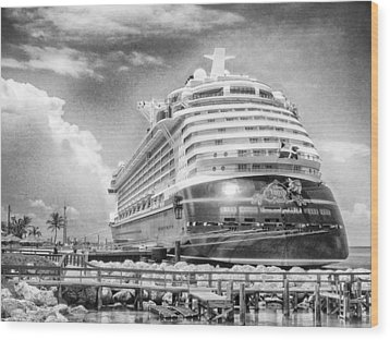 Wood Print featuring the photograph Disney Fantasy by Howard Salmon