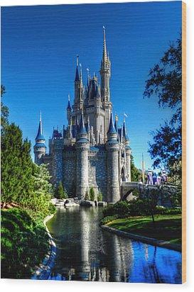 Disney Hdr 002 Wood Print by Lance Vaughn