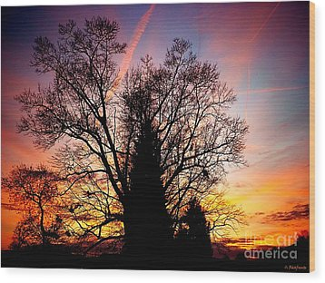 Display Of Beauty Wood Print by Christy Ricafrente