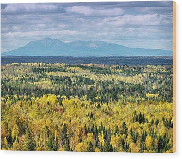 Wood Print featuring the photograph Distant Mountain by Gene Cyr
