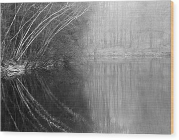Divided By Nature Bw Wood Print by Karol Livote