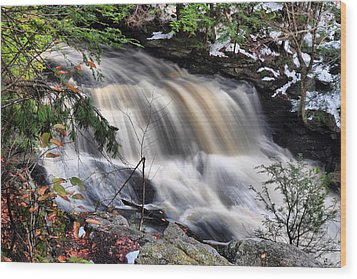 Doane's Lower Falls In Central Mass. Wood Print by Mitchell R Grosky