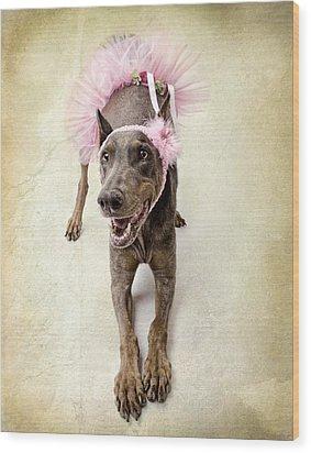 Doberman Ballerina  Wood Print by Susan Schmitz