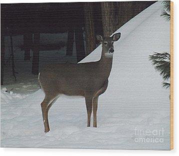 Doe A Deer Wood Print by Brenda Brown