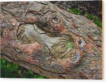 Dog Bone In The Bark Wood Print by Gary Slawsky