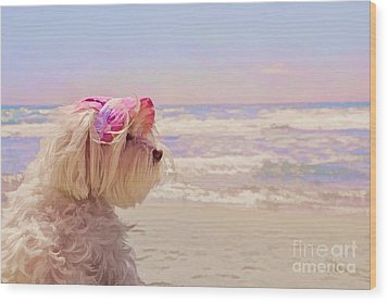 Dog Days Of Summer Wood Print by Andrea Auletta