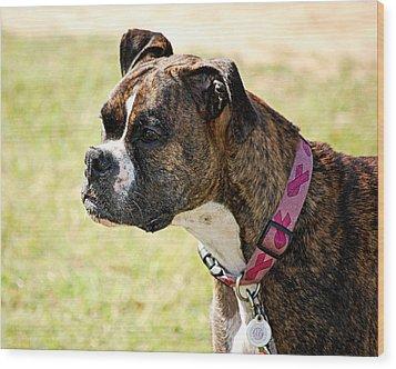 Dog Gone Pink Wood Print by AJ  Schibig