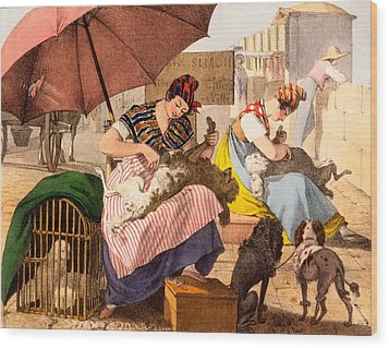 Dog Groomers, 1820 Wood Print by French School