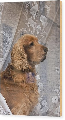 Wood Print featuring the photograph Dog In Window by Dennis Cox WorldViews