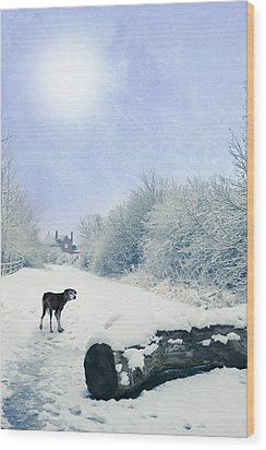 Dog Looking Back Wood Print by Amanda Elwell