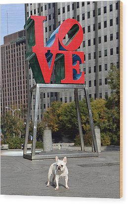 Dog Love Wood Print by Lisa Phillips