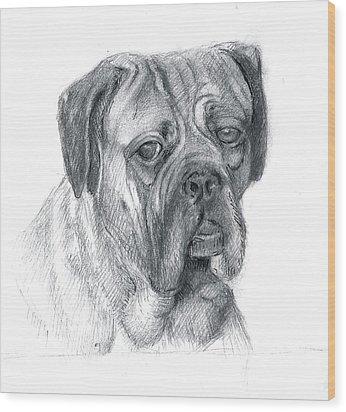 Boxer Dog Wood Print by Rose Wang