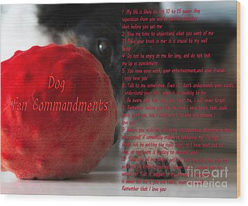 Dog Ten Commandments Wood Print by Stelios Kleanthous