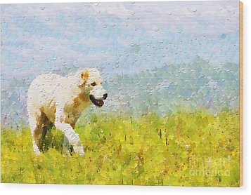 Dog Walking By Grass Painting Wood Print by Magomed Magomedagaev