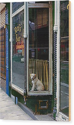 Doggy In The Window Version - 4 Wood Print