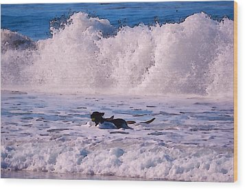 Dogs At Carmel California Beach Wood Print by Barbara Snyder
