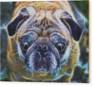 Dogs - The Psychedelic Fantasy Pug Wood Print by Lee Dos Santos