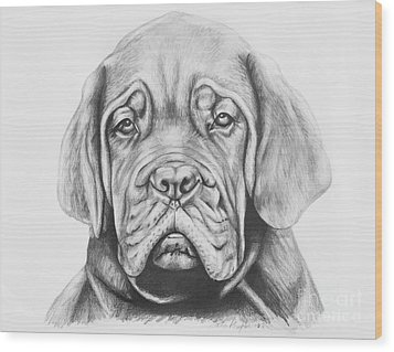 Dogue De Bordeaux Dog Wood Print by Lena Auxier