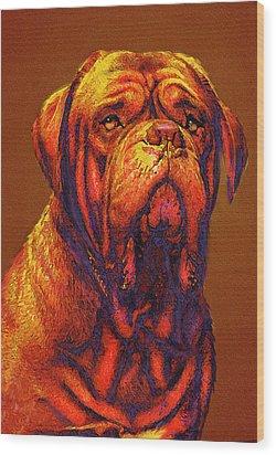 Dogue De Bordeaux Wood Print by Jane Schnetlage